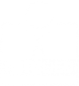 CH Icon_Siegel
